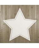 <h2>Holzbrett 011-30 Stern Steppstich 30cm</h2><p>Grösse (Breite x Höhe):</p><ul><li>30 x 30 cm</li></ul><p>Wahl zwischen Holz und Pappe</p>