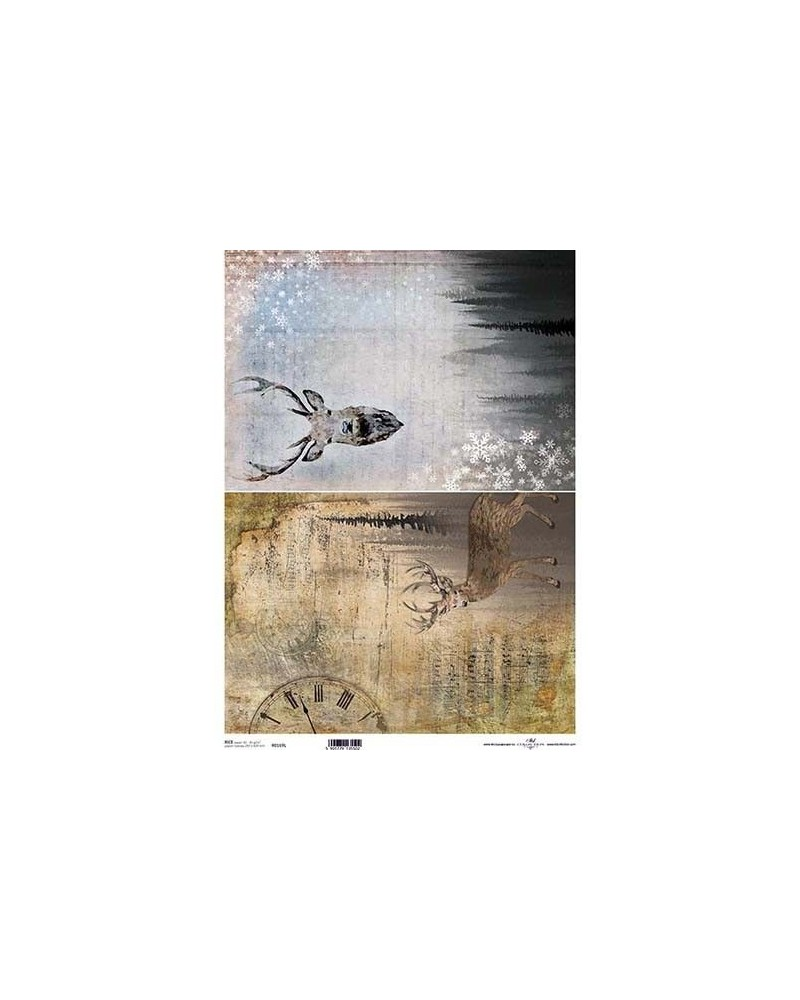 Papel de Arroz Decoupage R0169L A3