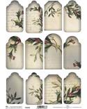 <p>Elegantes sets de tags fabricados con papeles de la máxima calidad para usar como base o fondo en scrapbooking, con bordes decorativos.</p>